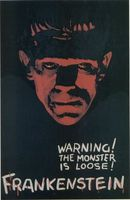 Frankenstein movie poster (1931) picture MOV_e7b2d321