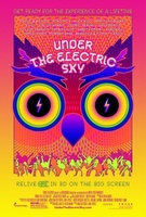 EDC 2013: Under the Electric Sky movie poster (2013) picture MOV_e86f2c66