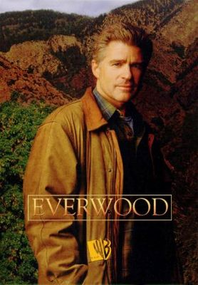 Everwood movie poster (2002) poster MOV_e8966c52