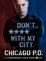 Chicago PD movie poster (2013) picture MOV_e8c96526