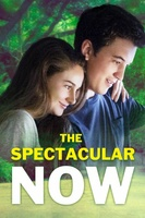 The Spectacular Now movie poster (2013) picture MOV_efedb685