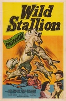 Wild Stallion movie poster (1952) picture MOV_f1e42cfe