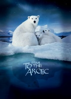 To the Arctic 3D movie poster (2012) picture MOV_f1ec3100
