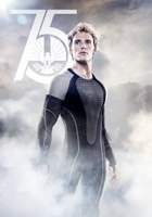 The Hunger Games: Catching Fire movie poster (2013) picture MOV_f3062d2d