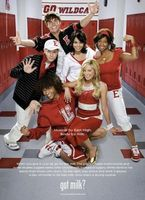 High School Musical 2 movie poster (2007) picture MOV_f4019134