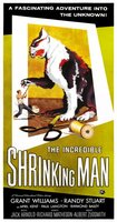 The Incredible Shrinking Man movie poster (1957) picture MOV_f5e663e3