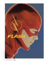 Flash movie poster (2014) picture MOV_f680b9ba