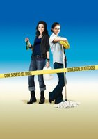 Sunshine Cleaning movie poster (2008) picture MOV_f69c67f5