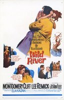 Wild River movie poster (1960) picture MOV_f77f6e4c