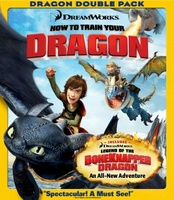 How to Train Your Dragon movie poster (2010) picture MOV_f8a24d24