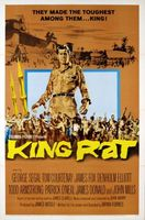 King Rat movie poster (1965) picture MOV_fa013b91
