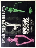 Splendor in the Grass movie poster (1961) picture MOV_fa78243b