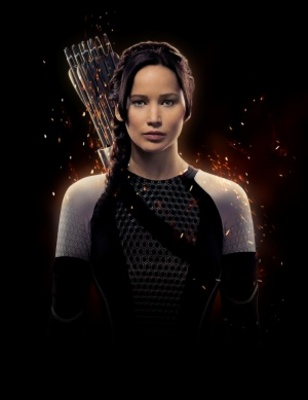 The Hunger Games: Catching Fire movie poster (2013) poster MOV_fabd4b0d