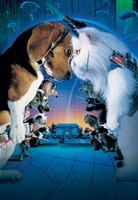 Cats & Dogs movie poster (2001) picture MOV_fca71061