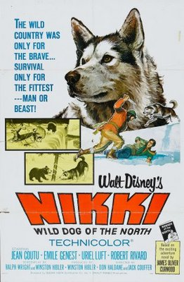 Nikki, Wild Dog of the North movie poster (1961) poster MOV_fd14fbea