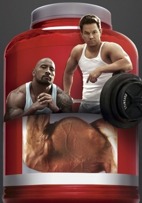 Pain and Gain movie poster (2013) poster MOV_fd444290
