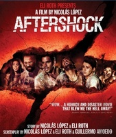 Aftershock movie poster (2012) picture MOV_fd98dda0