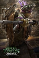 Teenage Mutant Ninja Turtles movie poster (2014) picture MOV_fdbf4887