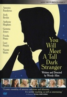 You Will Meet a Tall Dark Stranger movie poster (2010) picture MOV_fde729c5