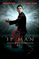 Yip Man 2: Chung si chuen kei movie poster (2010) picture MOV_fe487473