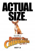 Beverly Hills Chihuahua movie poster (2008) picture MOV_ff428bae