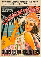 Bird of Paradise movie poster (1932) picture MOV_ffe4377d