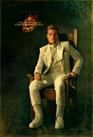 The Hunger Games: Catching Fire movie poster (2013) picture MOV_tmsafypq