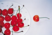 Cherry picture PH14537911