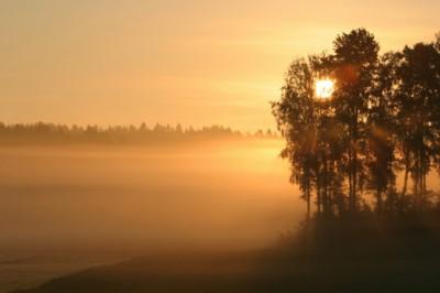 Fog poster PH14544236