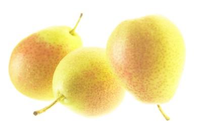 Pear poster PH15609744