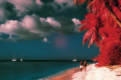 Caribbean poster PH7246064