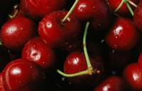 Cherry picture PH7257488