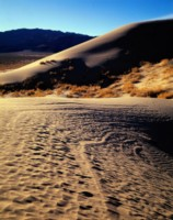 Death Valley National Park picture PH7284240
