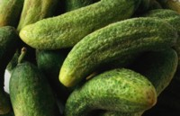 Cucumber picture PH7373905
