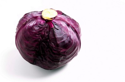 Cabbage poster PH7527330