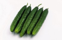 Cucumber picture PH7528530