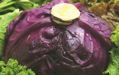 Cabbage poster PH7530393