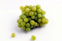 Grapes picture PH7531540