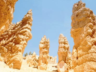 Bryce Canyon National Park poster PH7665751