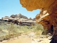 Canyonlands National Park picture PH7665049
