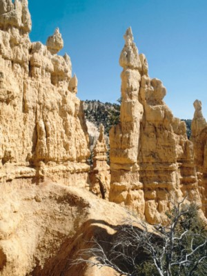 Bryce Canyon National Park poster PH7667071