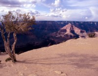 Grand Canyon National Park picture PH7669840
