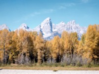 Grand Teton National Park picture PH7699593