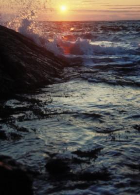 Maine poster PH7727240