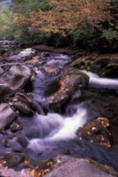 Great Smoky Mountains National Park picture PH7847127