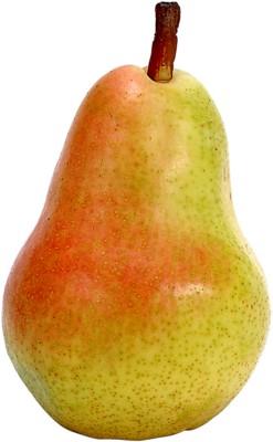 Pear poster PH8022613