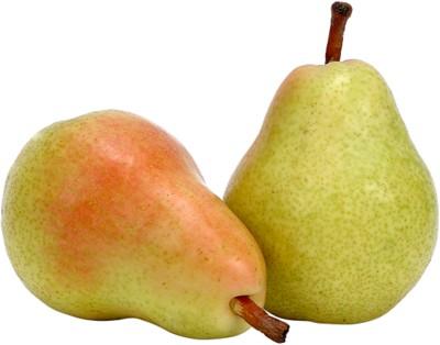 Pear poster PH8022653