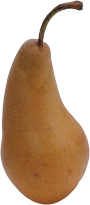 pear poster PH8023739