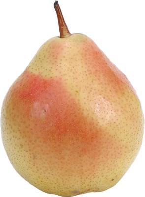 pear poster PH8023870
