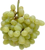 Grapes picture PH8027318